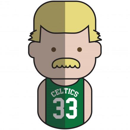 Bird Celtics